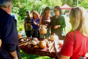 students-at-the-knowledge-of-the-wise-work-shop-check-out-objects-of-maori-material-culture