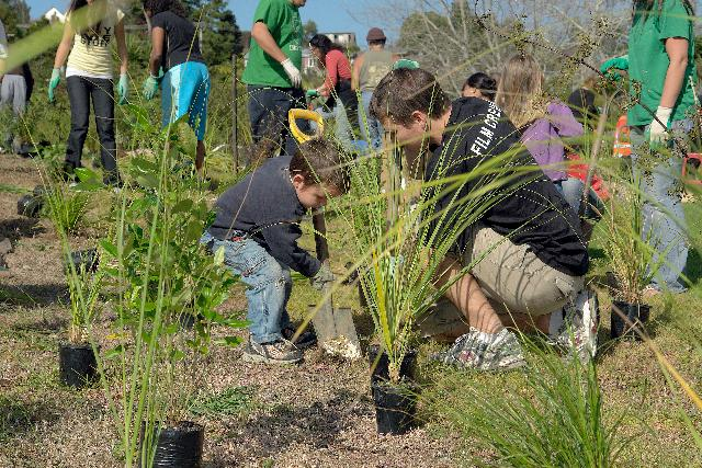 52-community-planting-days-held