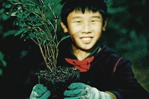 45852-volunteer-planting-hours