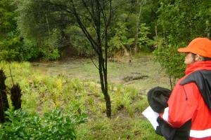 wetlandview